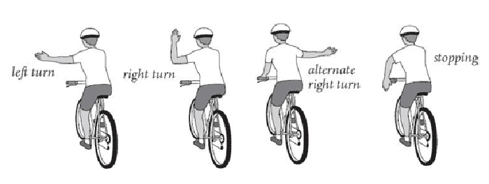 Bike Signaling Illustration